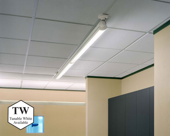 Accentra Surface/Ceiling Mount